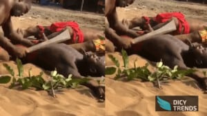Watch Video: Powerful Juju Men Show Their Powers By Cutting Each Other With Cutlass