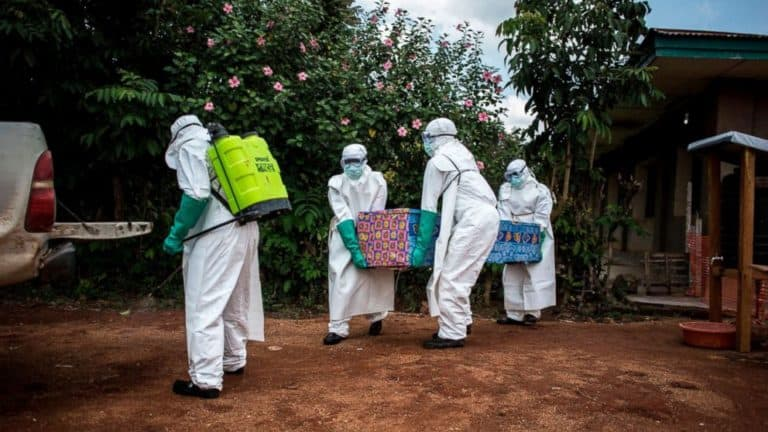 Read more about the article Ebola  Virus Reappears  In Africa