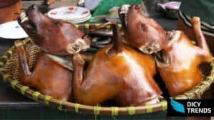 Dog meat shortage hit parts of northern Ghana