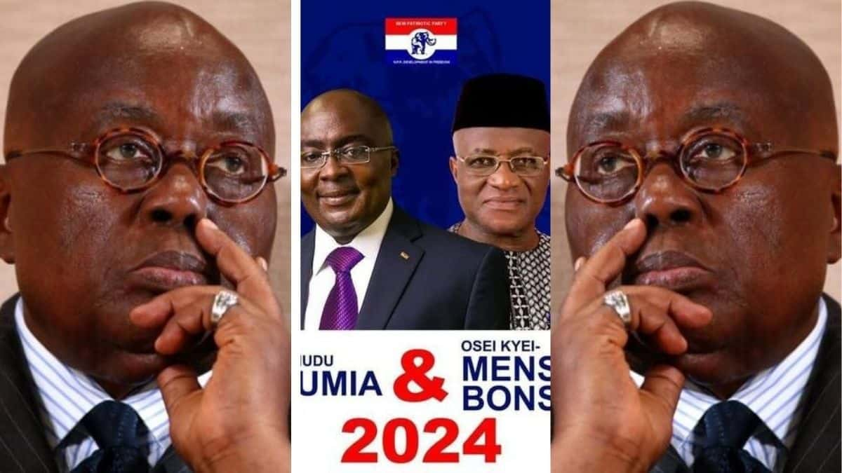 Another NPP Big Wigs Posters drops For NPP flagbearer-ship and a running mate
