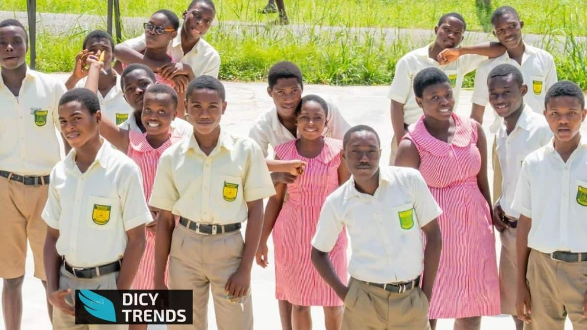 Read more about the article Top(best) 5 mixed schools in Ghana 2021
