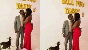 Read more about the article Man From Nigeria Proposes To Girlfriend With A Goat,She Said YES